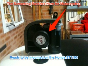 Image of the Screaming Banshee Horn