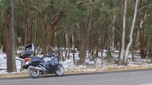 Image of Snow Motorcycle Riding, snow in the tree line: Shooters Hill, NSW